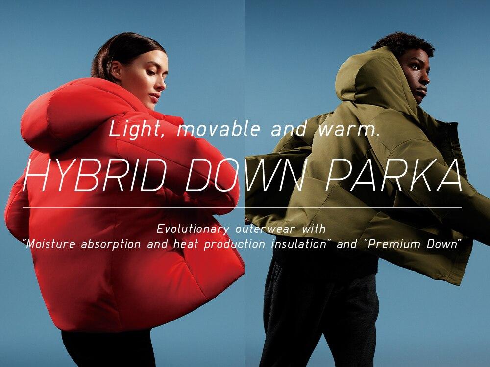 Hybrid Down image