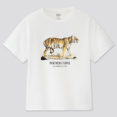 Kids Natural History Museum Ut (Short-Sleeve Graphic T-Shirt), White, Medium