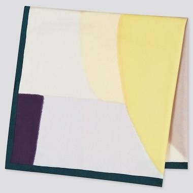 Women Silk Colour Block Print Scarf
