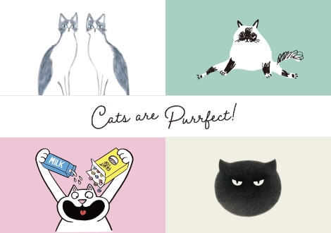 CATS ARE PURRFECT UT COLLECTION | COMING SOON