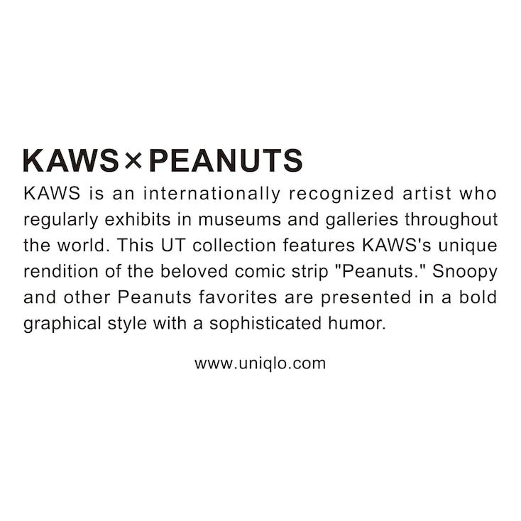 Men Kaws X Peanuts Short-Sleeve Graphic T-Shirt, Black, Large