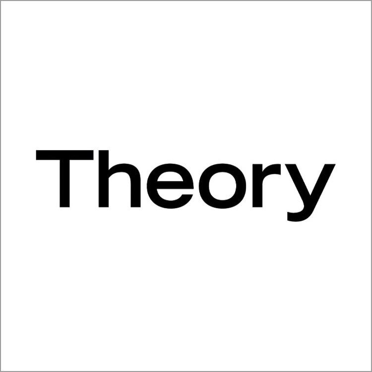 Theory image