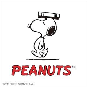 An artwork of Peanuts